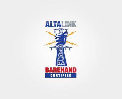 Alta-Link.jpg