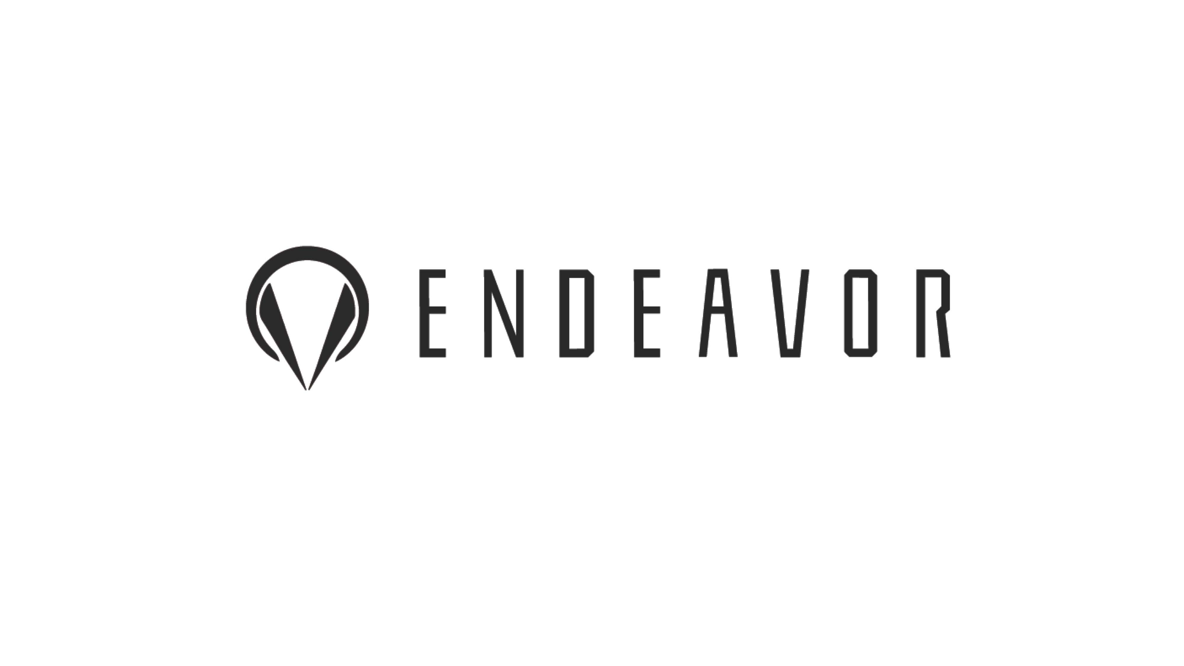 endeavor_03.jpg