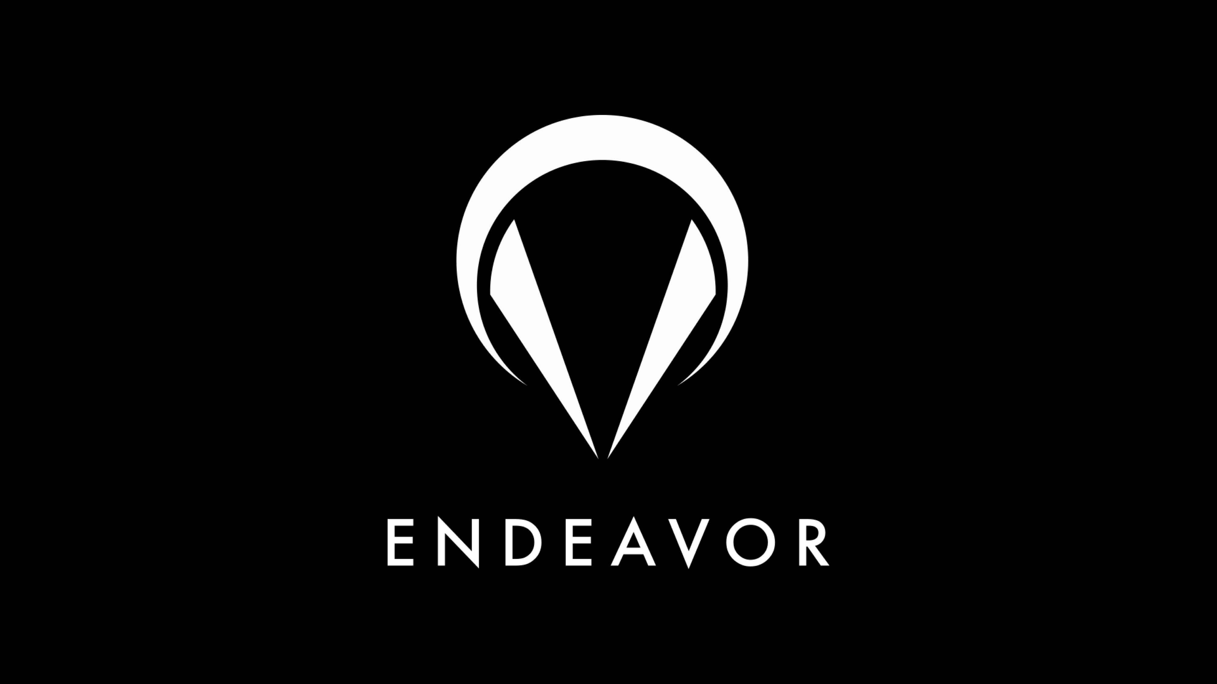 endeavor_13.jpg