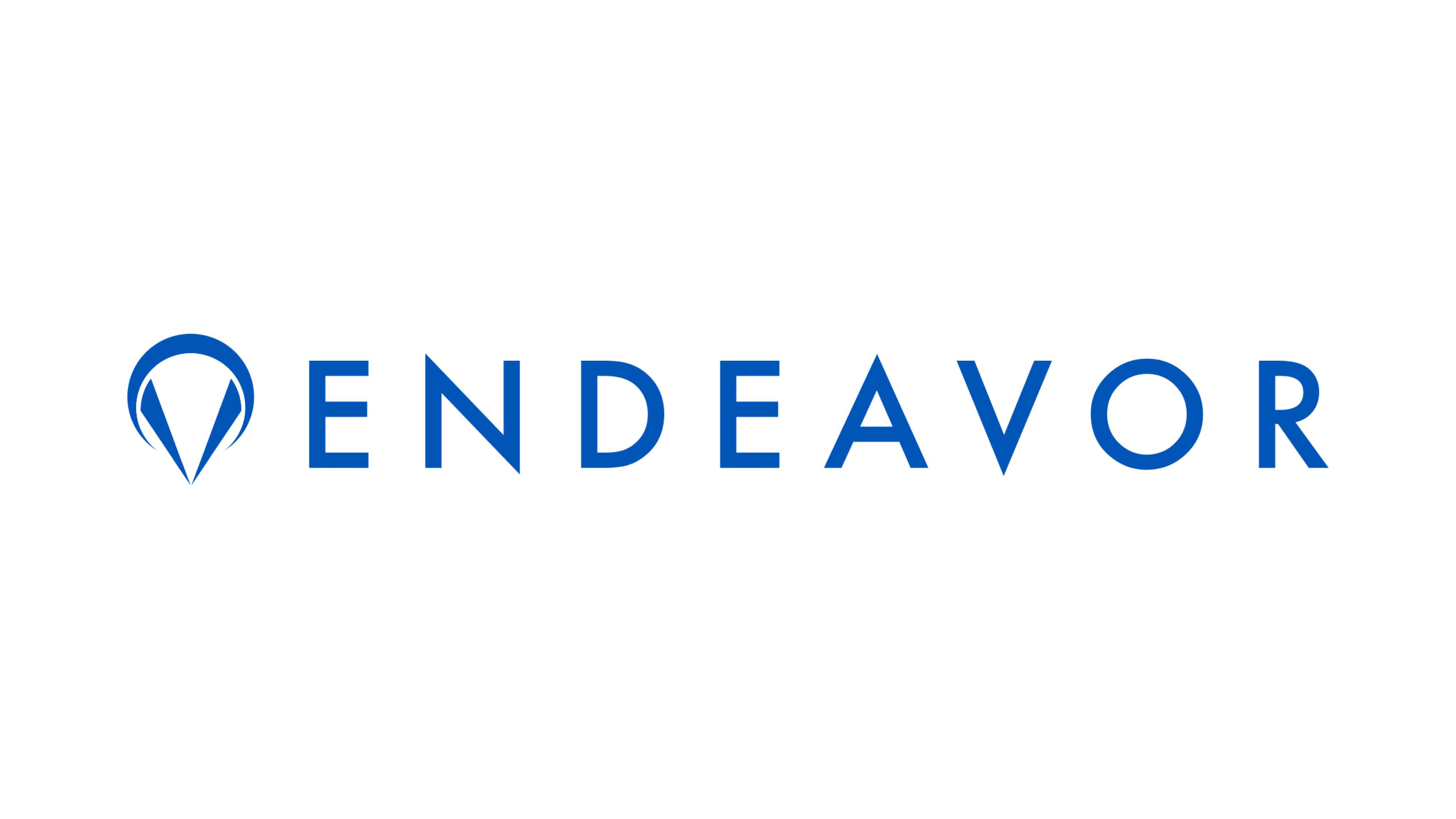 endeavor_19.jpg