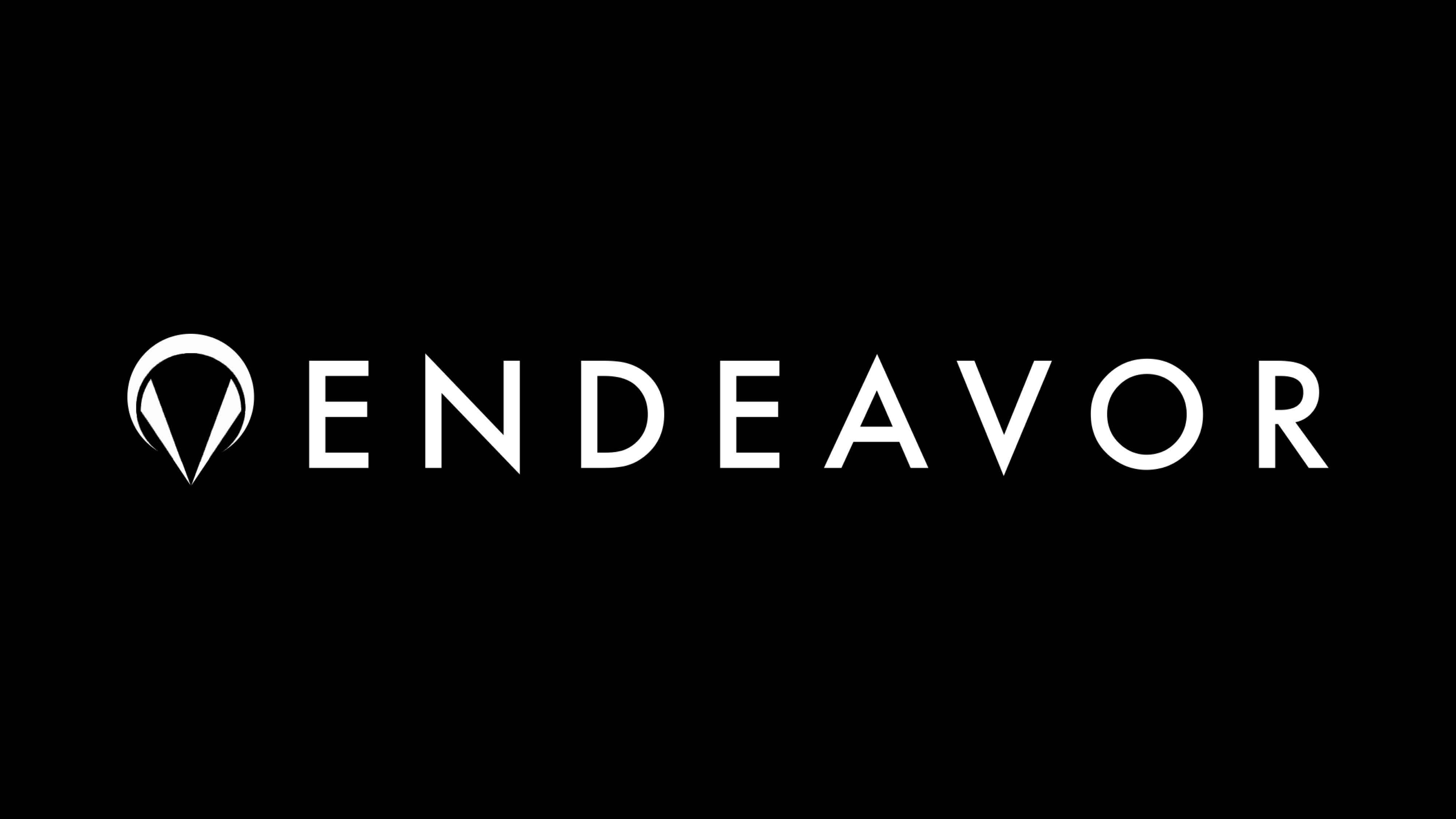 endeavor_20.jpg