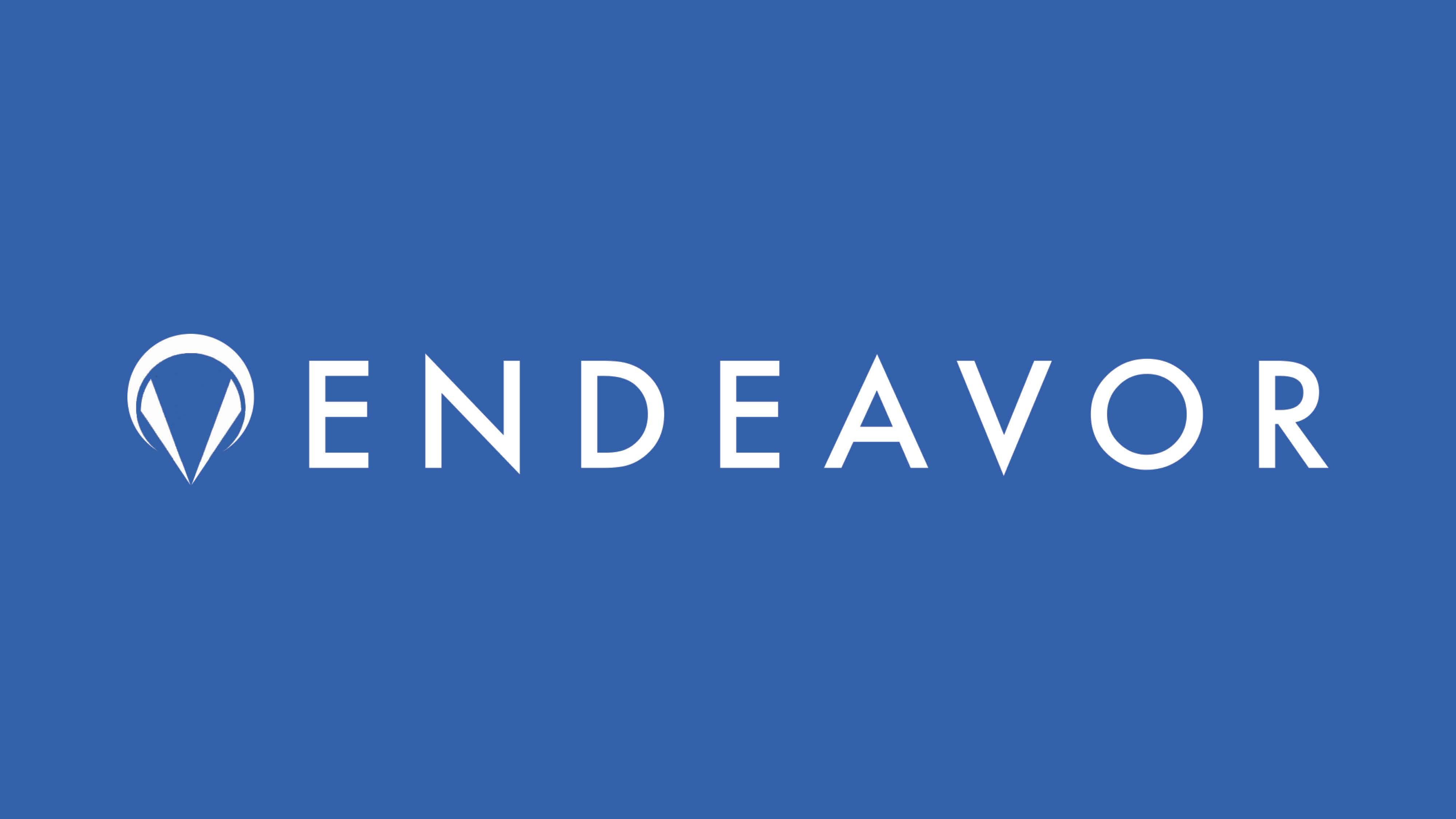 endeavor_21.jpg