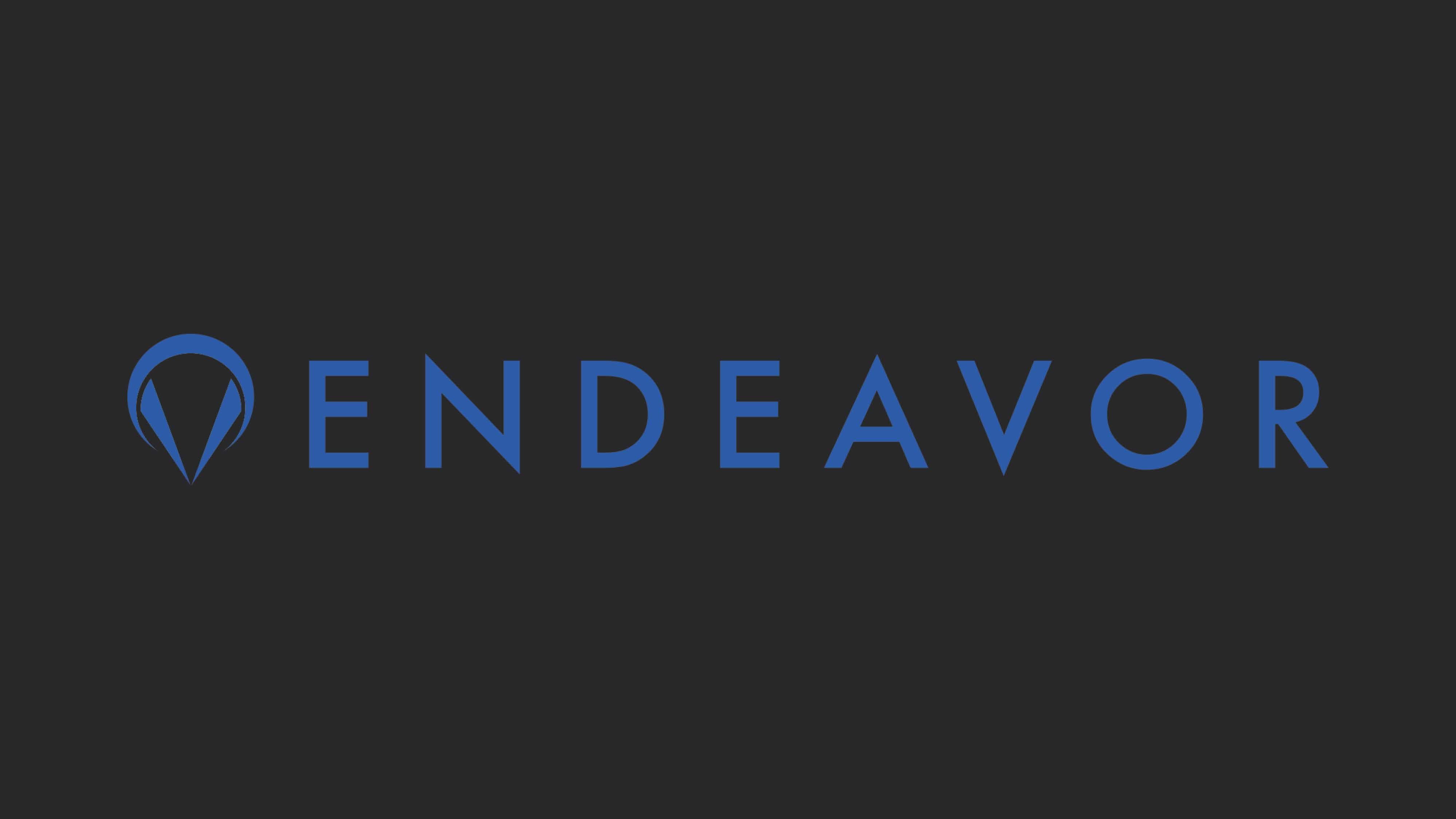 endeavor_22.jpg